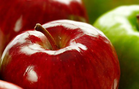 המורה ביקשה מהתלמידים שלה לצעוק על תפוח. אבל כשהם גילו למה, הם פרצו בבכי.
