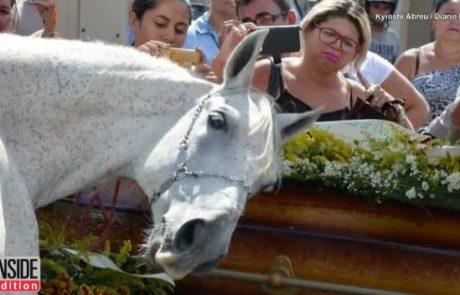 תגובת הסוס המתאבל שהלך להלוויה של בעליו השאירה מדינה שלמה בהלם!