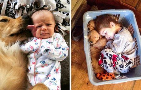 23 תמונות שמוכיחות עד כמה חשוב שילדים יגדלו עם חיות מחמד