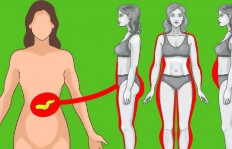 10 טיפים להורדת האינסולין כדי לרדת במשקל